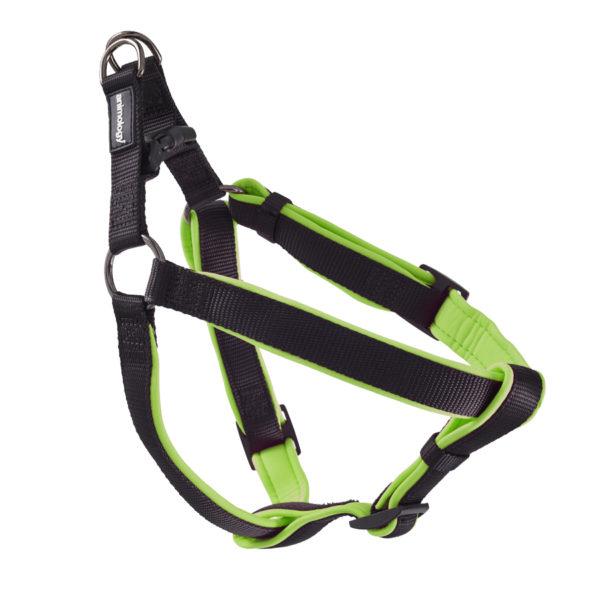 Animology-Green-Dog-Harness