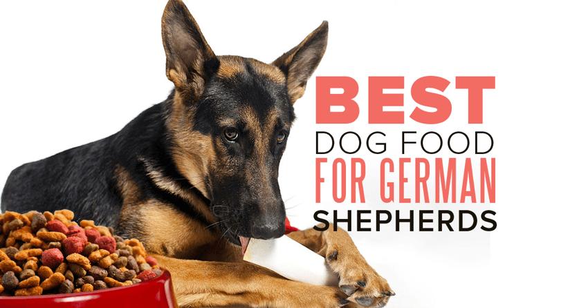 Royal Canin 174 German Shepherd Adult Dry Dog Food